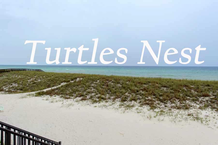 Turtle Nest Beach House Villa