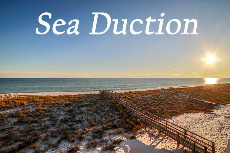 Sea Duction